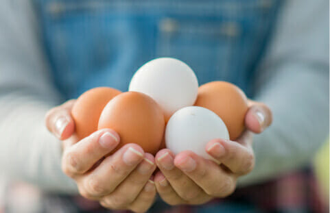 a person holding eggs in their hands