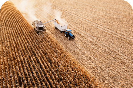 Aerial view of tractor working in field
